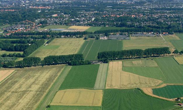 Groene polder